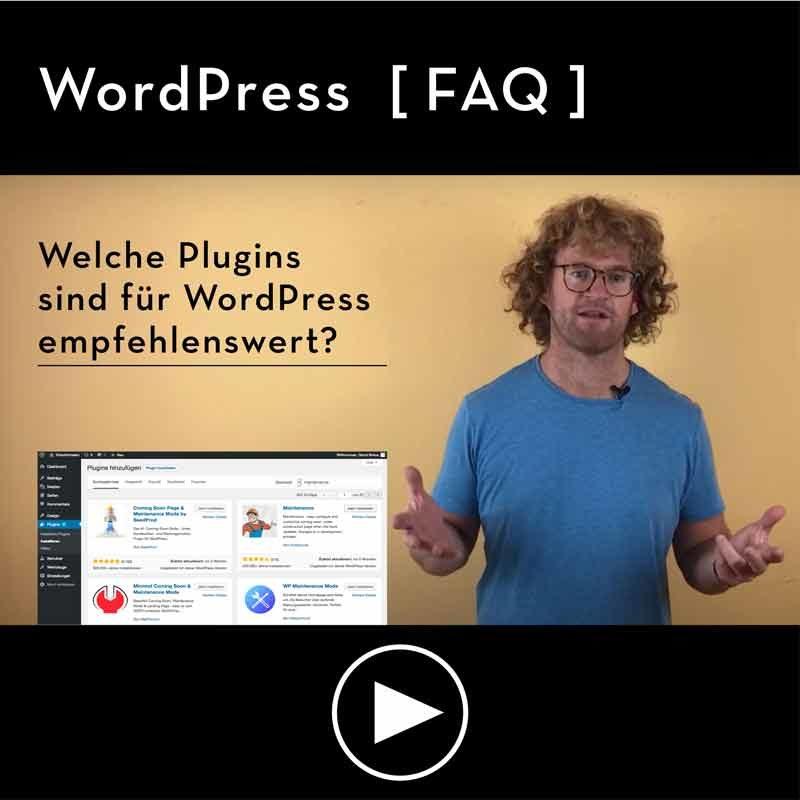 FAQ-Welche-Plugins-sind-fuer-WordPress-gut