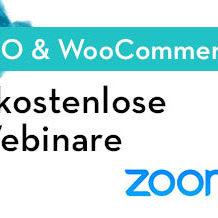 SEO-Webinar-Zoom-Skype