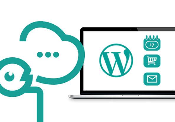 Wordpress-experte-wien